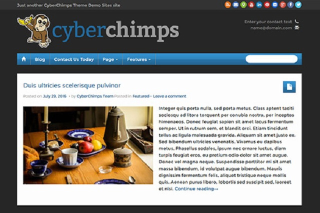 Cyberchimps Review - iFeature Pro 5.5