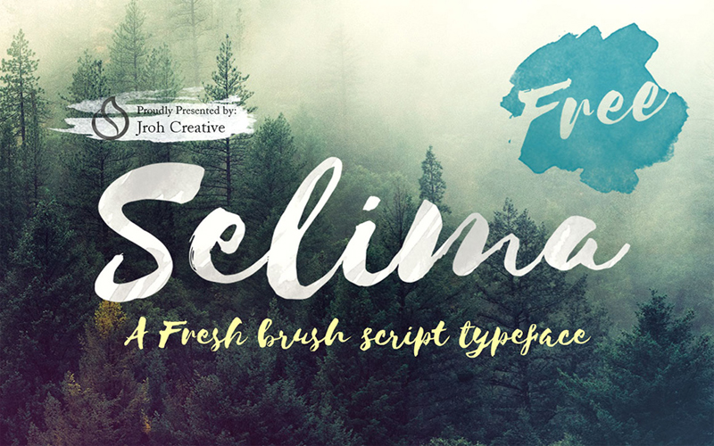 Top 10 Incredible Freebies For Web Designers and Developers - Selima